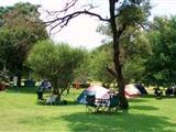 Highlands Meander Camping and Caravanning