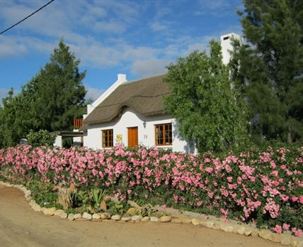 Karoo Cottage from the street