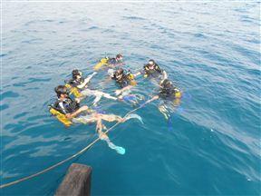 Scuba divers prepare to descend