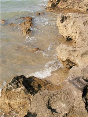 The tide washes in on Wasini Island