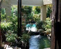 Koi Pond and Pool