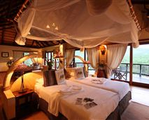 Safari suite bedroom