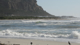 Things to do in Elands Bay
