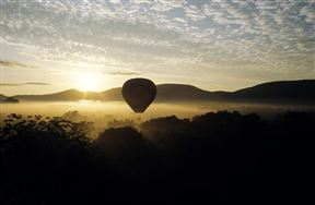 Bill Harrop's Original Balloon Safaris
