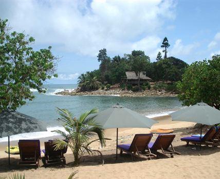 Sun loungers on the beach.