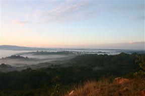 Kakamega Forest Sunrise