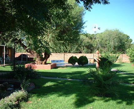 Peaceful braai and garden area