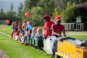 Redberry Express Mini Train