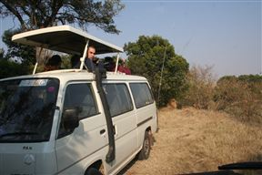 Tourist During game drive in the park