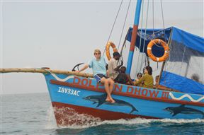Dolphin Dhow Safaris