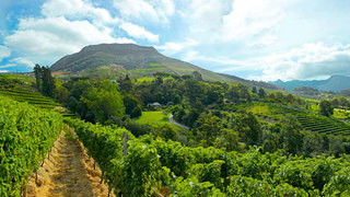 Things to do in Southern Suburbs