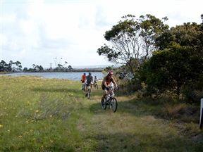 Clearwater Mountain Bike Trail