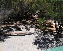 Boma braai and outdoor dining area