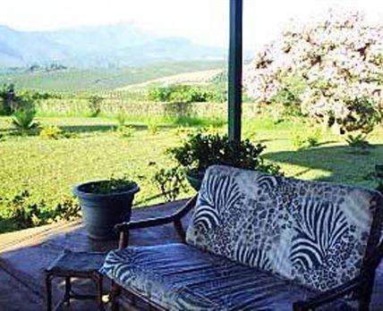 The patio views.