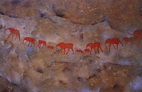 Cederberg Rock Art