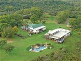 Central Drakensberg Safari