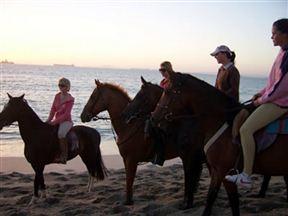 Oliphantskop Horse Trails