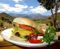 We serve a variety of homemade burgers