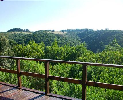 One of the views from the wraparound deck at the Main Lodge © Ingwe Forest Adventures