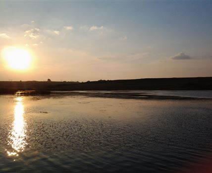 Sunset Forelwater