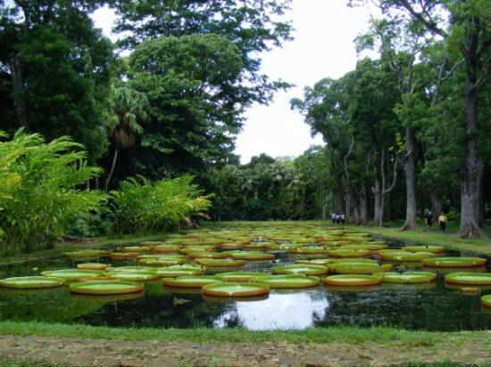 Free State Botanical Gardens