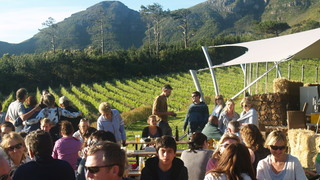 Things to do in Noordhoek