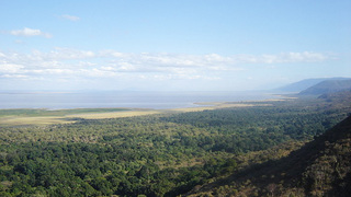 Things to do in Lake Manyara National Park