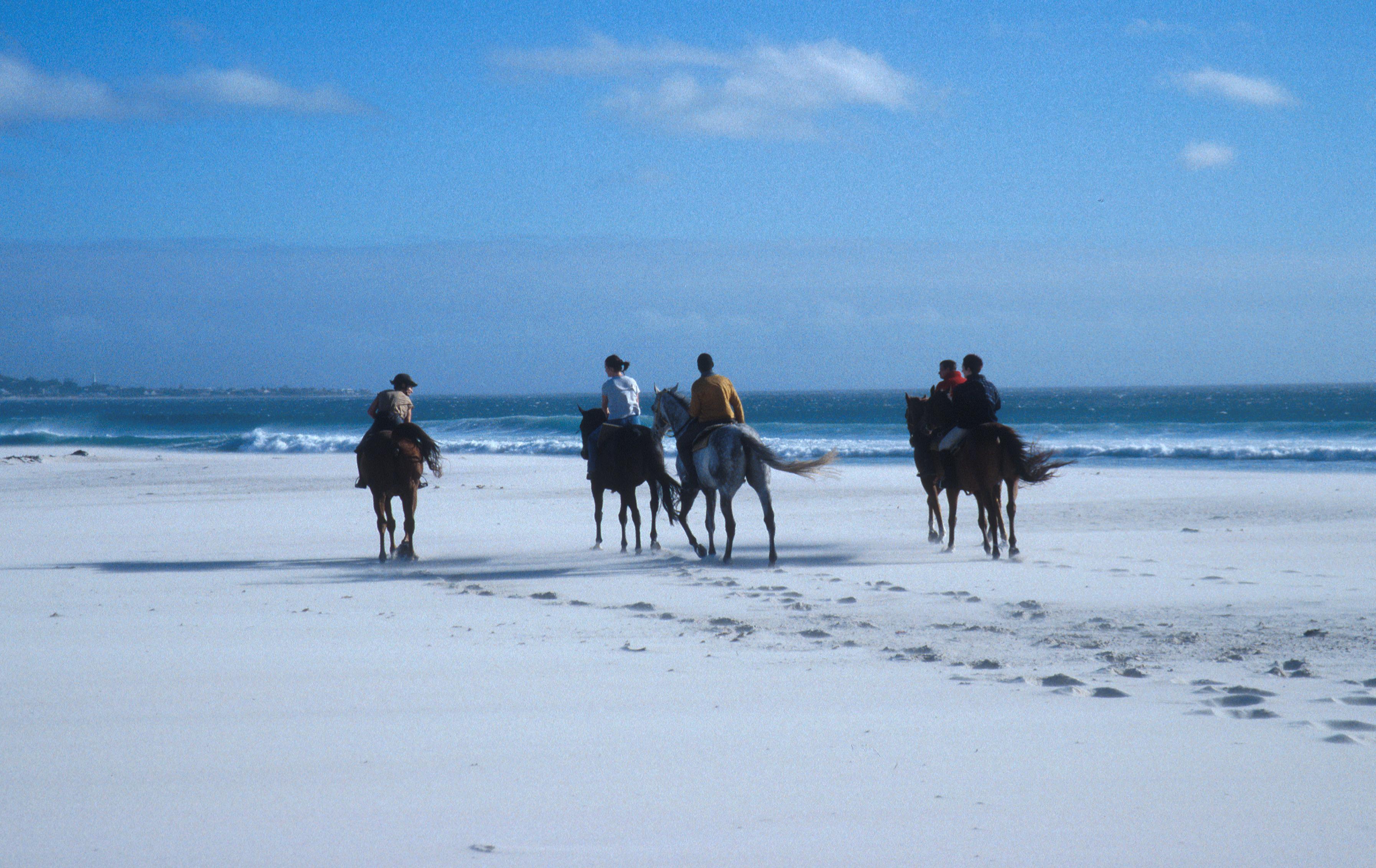 Noordhoek Beach Horse Riding