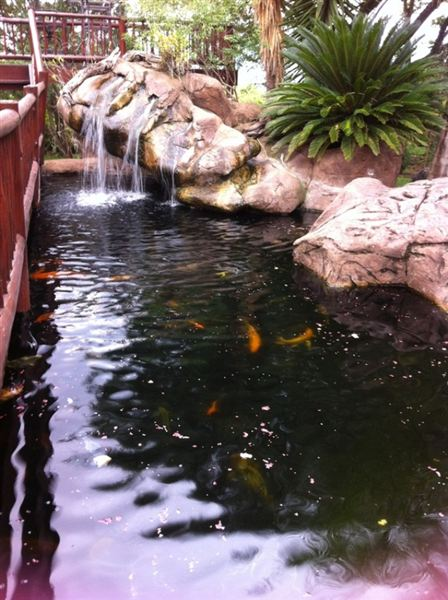 High hide lodge for Koi pond hiding places