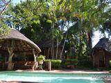 Mapungubwe Region Safari
