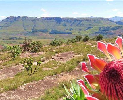 Taken from Fairbairn Kop Plateau facing west