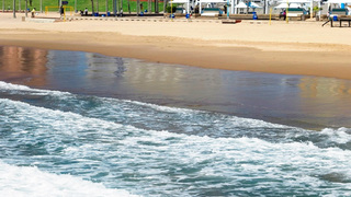 Things to do in Addington Beach