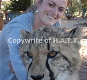Safari with H.A.T.T., Hermanus