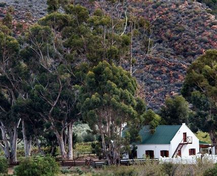 Favalosa Cottage - self-catering cottage - romantic getaway