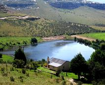 Beautiful campsite with electricity, braais. Away from any  noise. Pet friendly