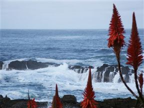 Storms River Mouth Accommodation