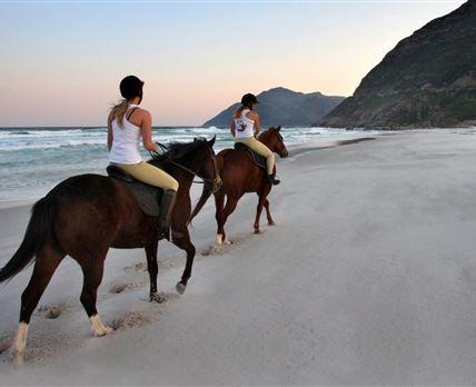 Our beach rides
