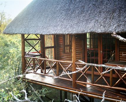 Elevated, Elegant Wood and Thatch in the Marula canopy © Lion Tree Bush Lodge