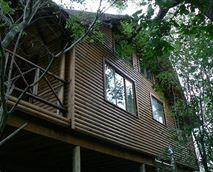 In the Marula canopy © Lion Tree Bush Lodge