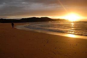 Wild Coast Beach