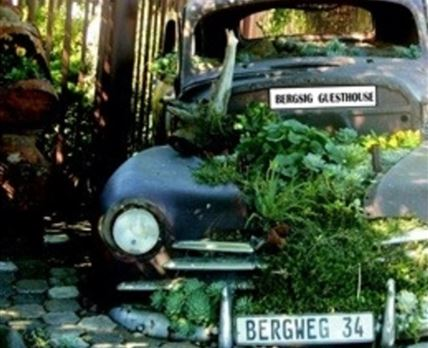 Our unique antique car turned garden welcomes you