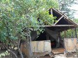 Maasai Mara Camping and Caravanning