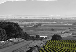 Things to do in Swartland