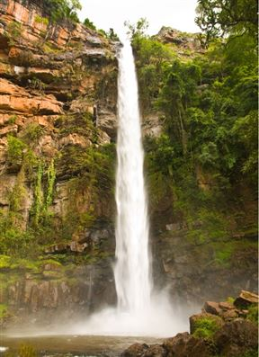 9 kms from Sabie on the Old Lydenburg Road.  The beautiful 68m falls are a National Monument.  Short 200m walk to base of falls on pathways.  Picnic Spots available.  Curios on site