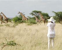 Walking Safari across Savannah grasslands © Maasai SImba Camp
