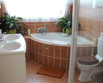 Honeymoon suite, Room 1, spa bath & large shower