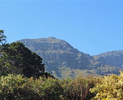 View of the Helderberg Mountains