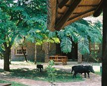 Lodge © Phumula Kruger Lodge