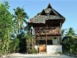 Zanzibar Archipelago Backpacker