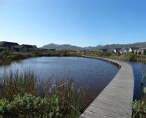 Board walk along the lake